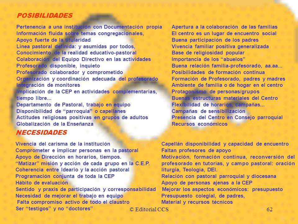 POSIBILIDADES NECESIDADES © Editorial CCS