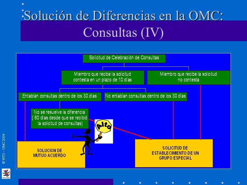 Solución de Diferencias en la OMC: Consultas (IV)