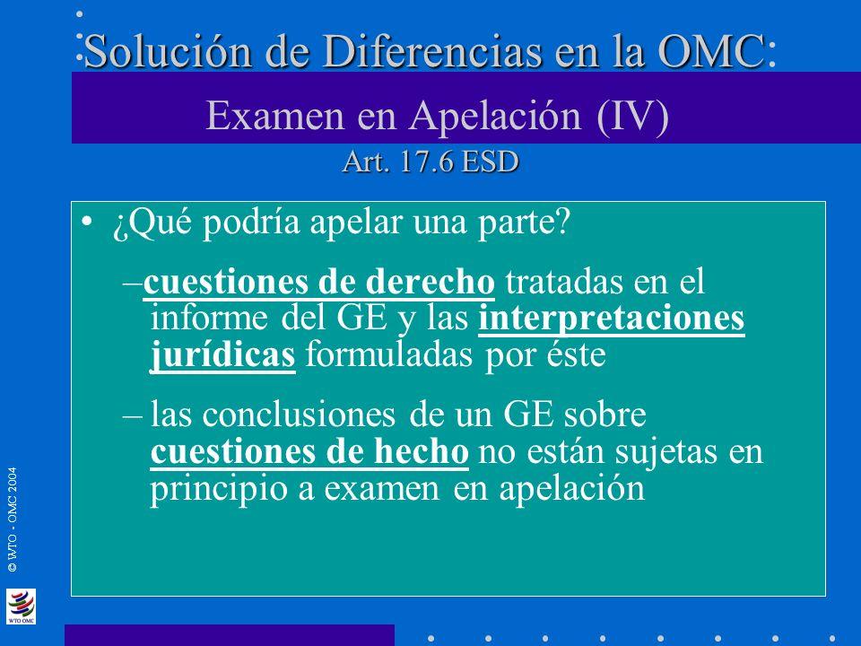 Solución de Diferencias en la OMC: Examen en Apelación (IV) Art. 17