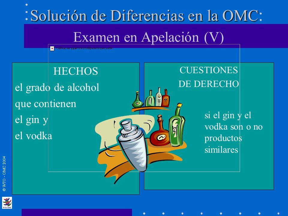 Solución de Diferencias en la OMC: Examen en Apelación (V)