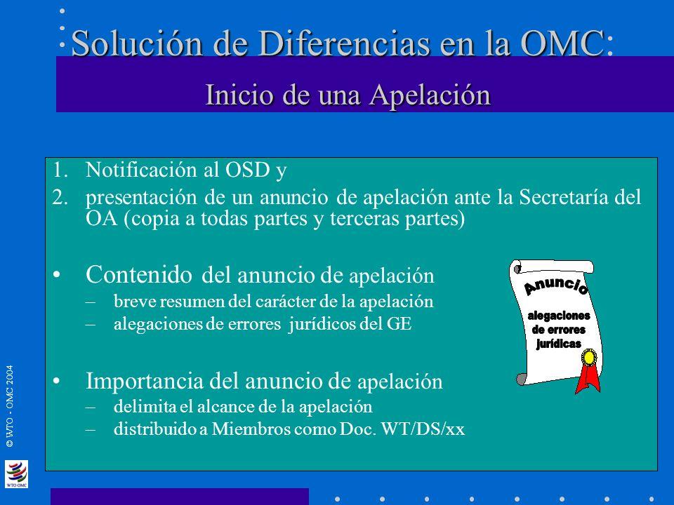 Solución de Diferencias en la OMC: Inicio de una Apelación