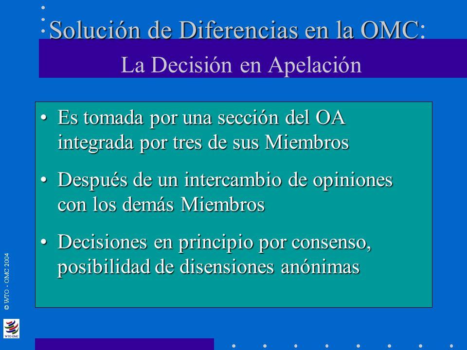 Solución de Diferencias en la OMC: La Decisión en Apelación