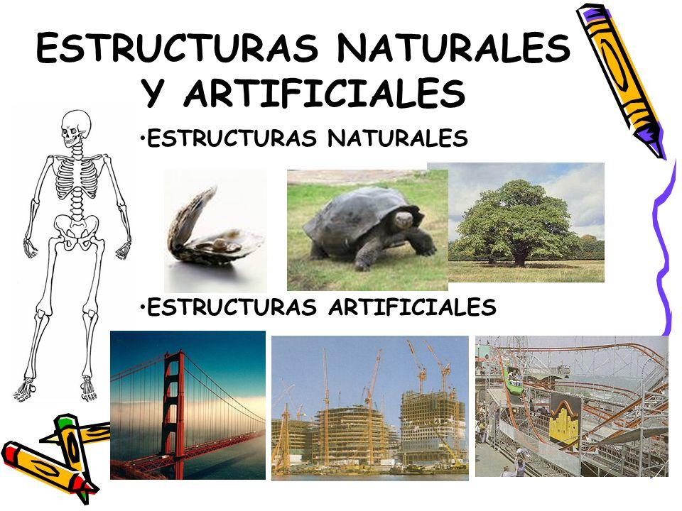 ESTRUCTURAS NATURALES Y ARTIFICIALES