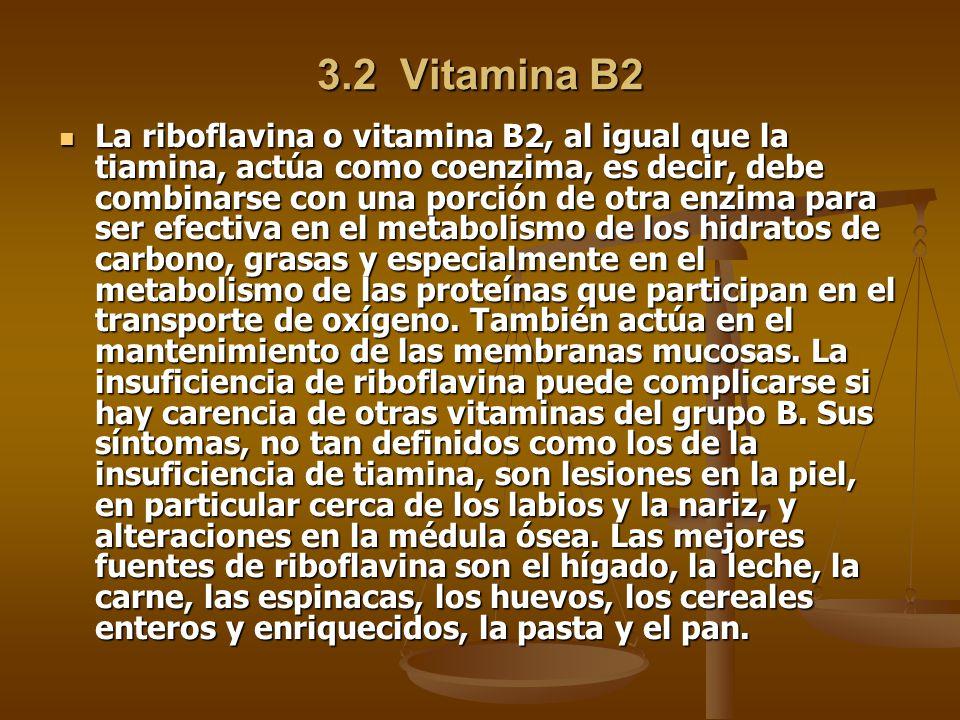 3.2 Vitamina B2