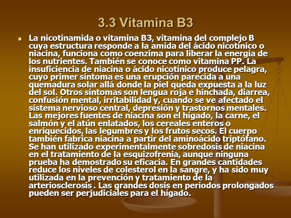 3.3 Vitamina B3