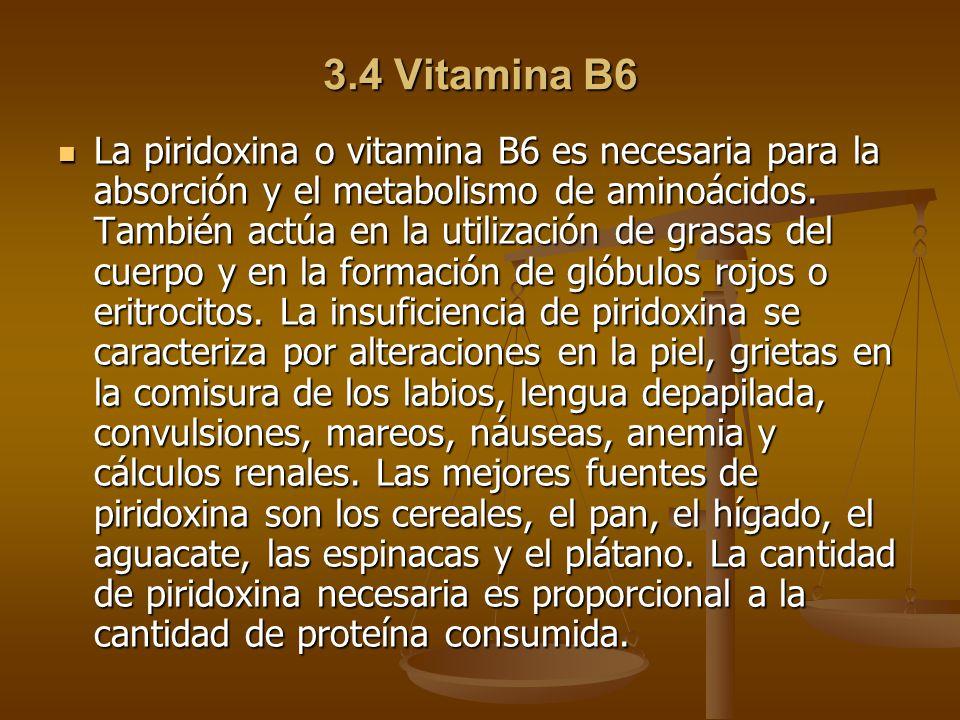 3.4 Vitamina B6