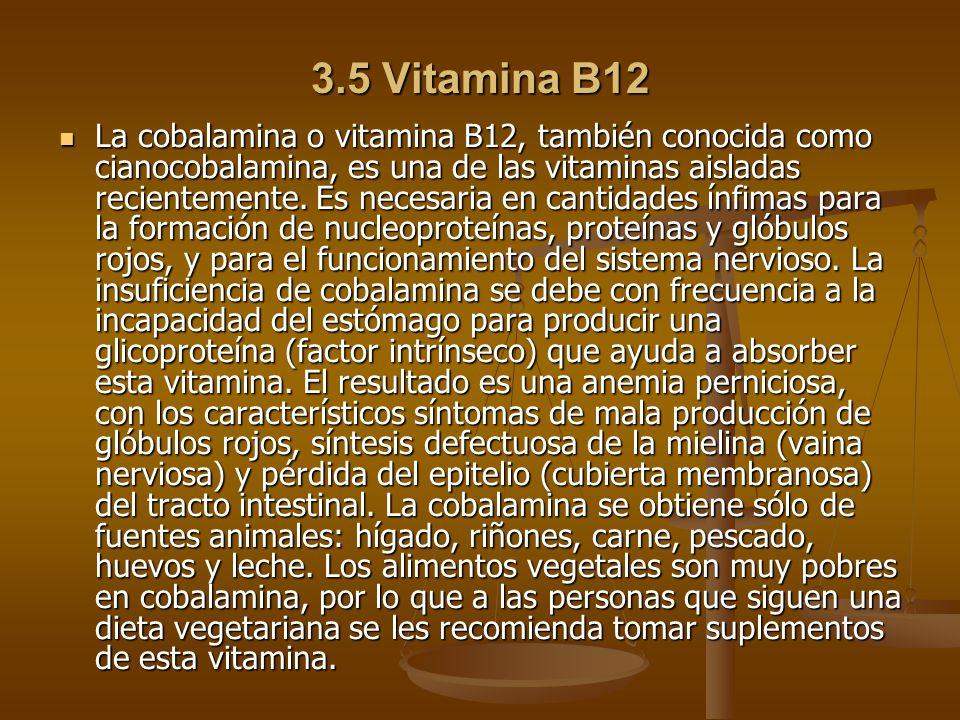 3.5 Vitamina B12
