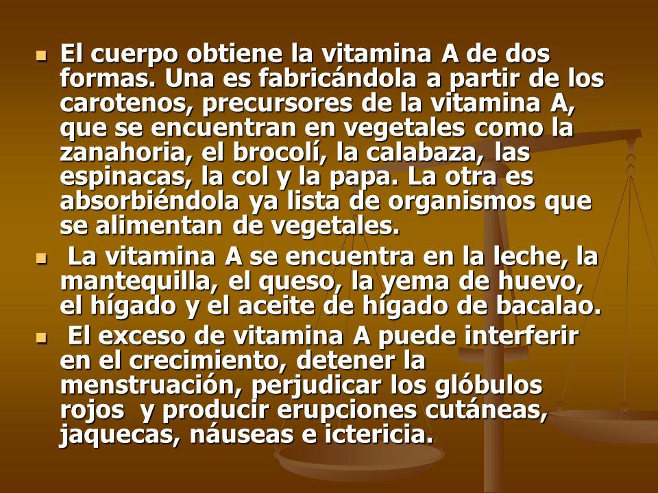 El cuerpo obtiene la vitamina A de dos formas