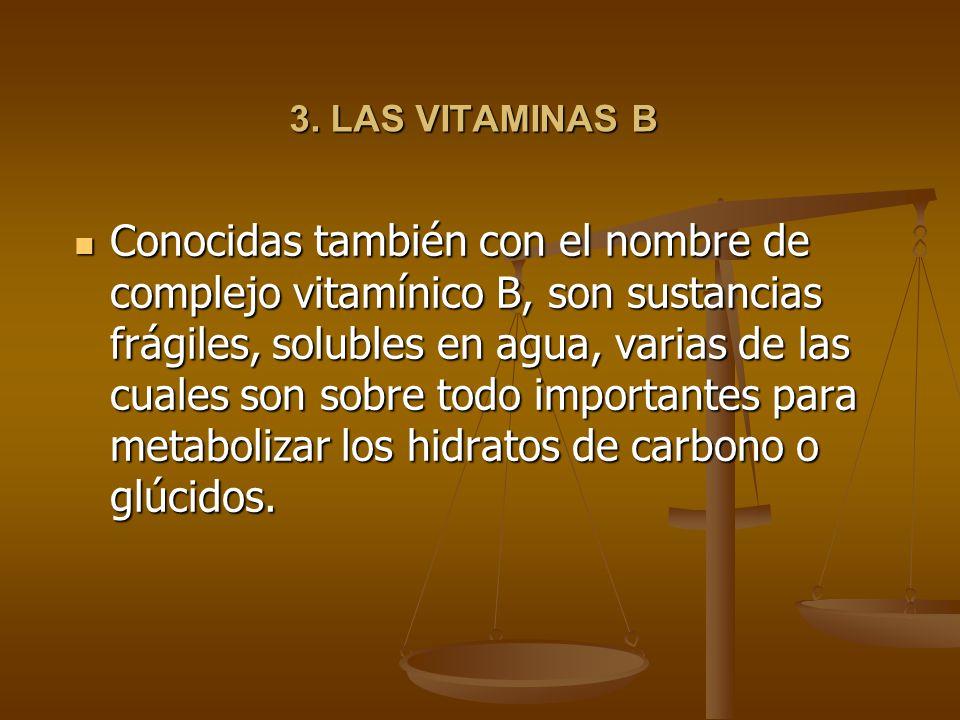 3. LAS VITAMINAS B
