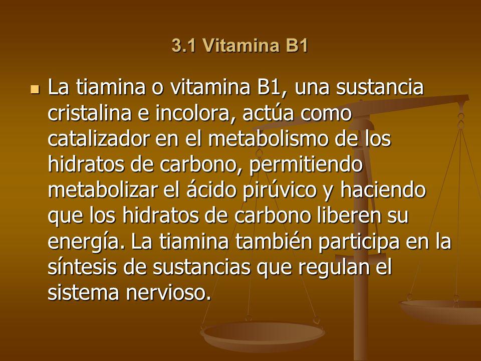 3.1 Vitamina B1