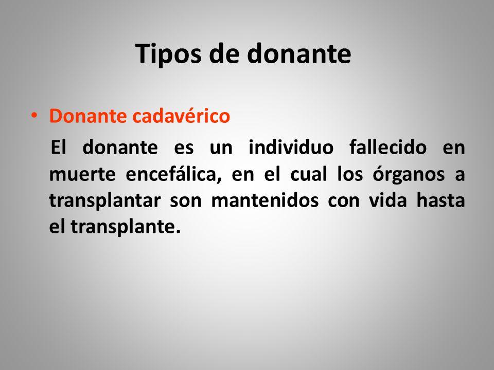 Tipos de donante Donante cadavérico
