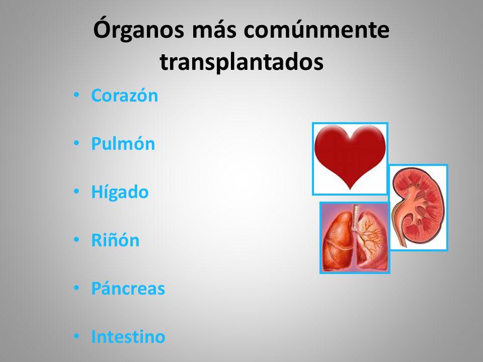 Órganos más comúnmente transplantados