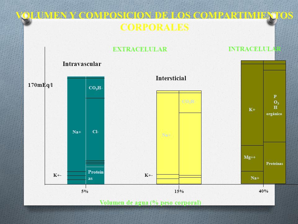 VOLUMEN Y COMPOSICION DE LOS COMPARTIMIENTOS CORPORALES