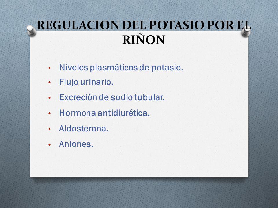 REGULACION DEL POTASIO POR EL RIÑON
