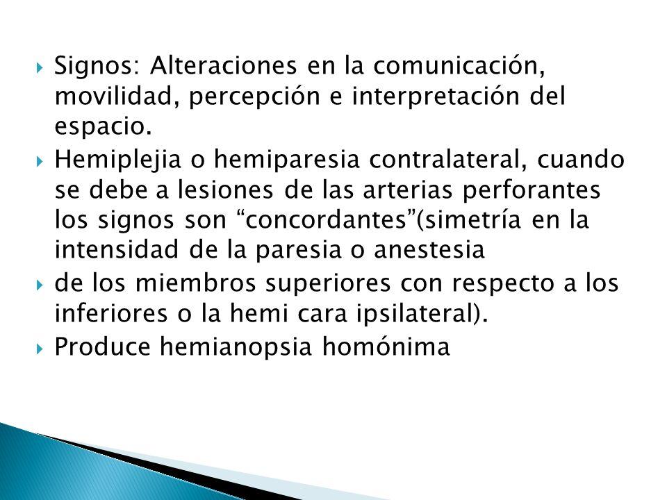 Signos: Alteraciones en la comunicación, movilidad, percepción e interpretación del espacio.