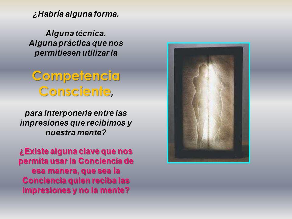 Competencia Consciente,