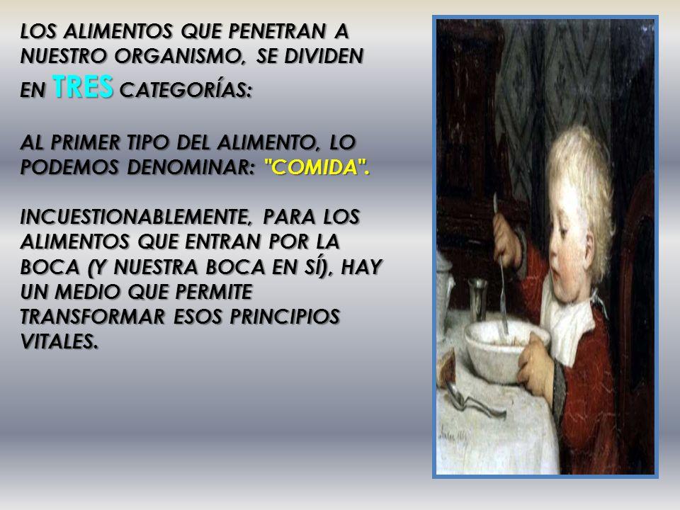 LOS ALIMENTOS QUE PENETRAN A NUESTRO ORGANISMO, SE DIVIDEN EN TRES CATEGORÍAS: