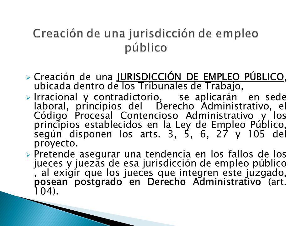 Creación de una jurisdicción de empleo público