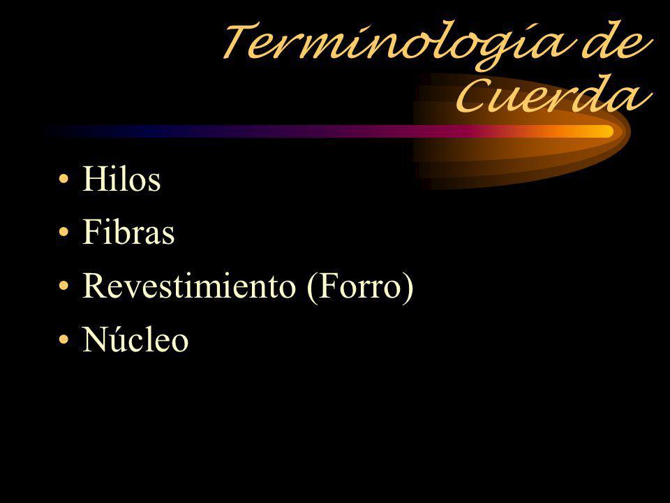 Terminología de Cuerda