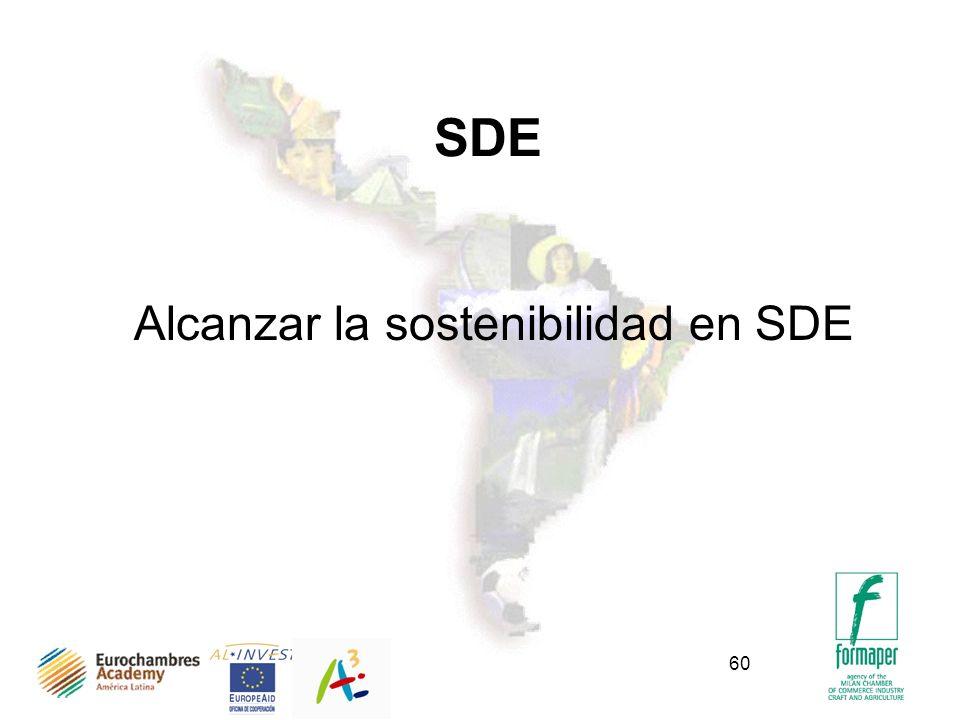 SDE Alcanzar la sostenibilidad en SDE Bogotà, Marzo 2002
