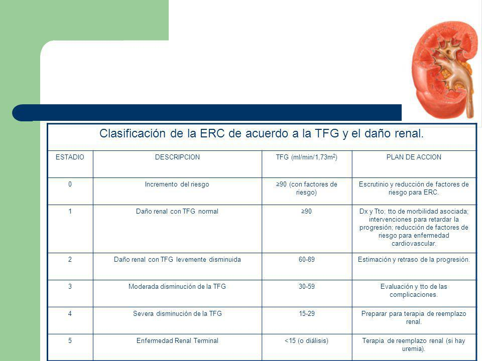 Clasificación de la ERC de acuerdo a la TFG y el daño renal.