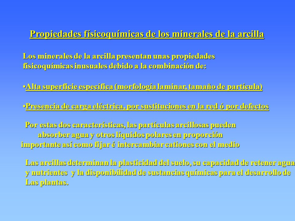 Propiedades físicoquímicas de los minerales de la arcilla