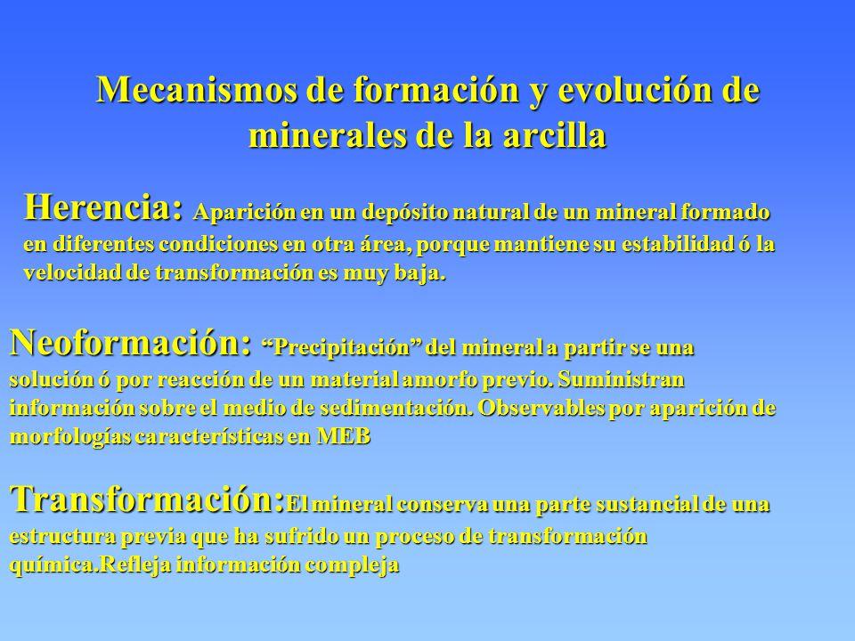 Mecanismos de formación y evolución de minerales de la arcilla