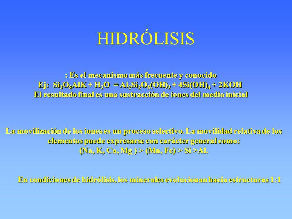 HIDRÓLISIS : Es el mecanismo más frecuente y conocido