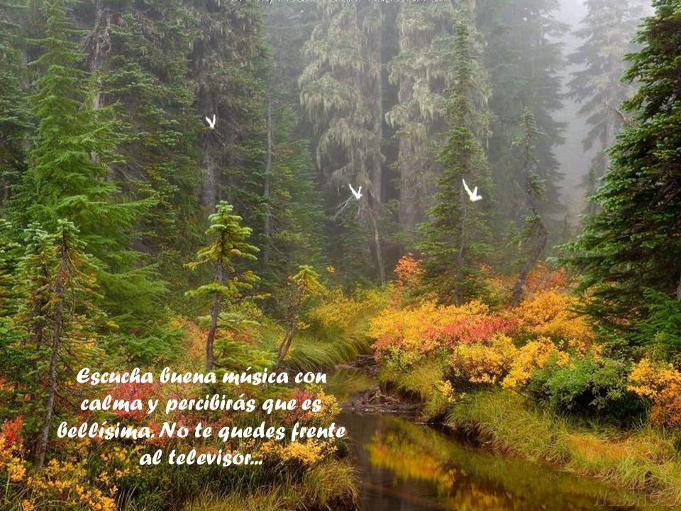 Escucha buena música con calma y percibirás que es bellísima
