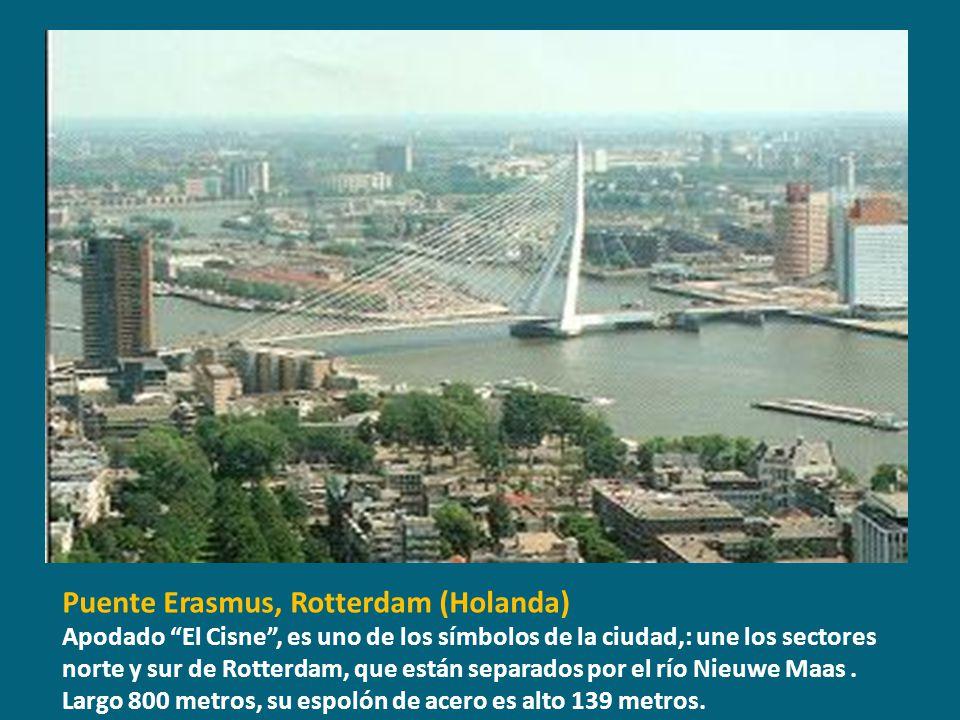 Puente Erasmus, Rotterdam (Holanda)