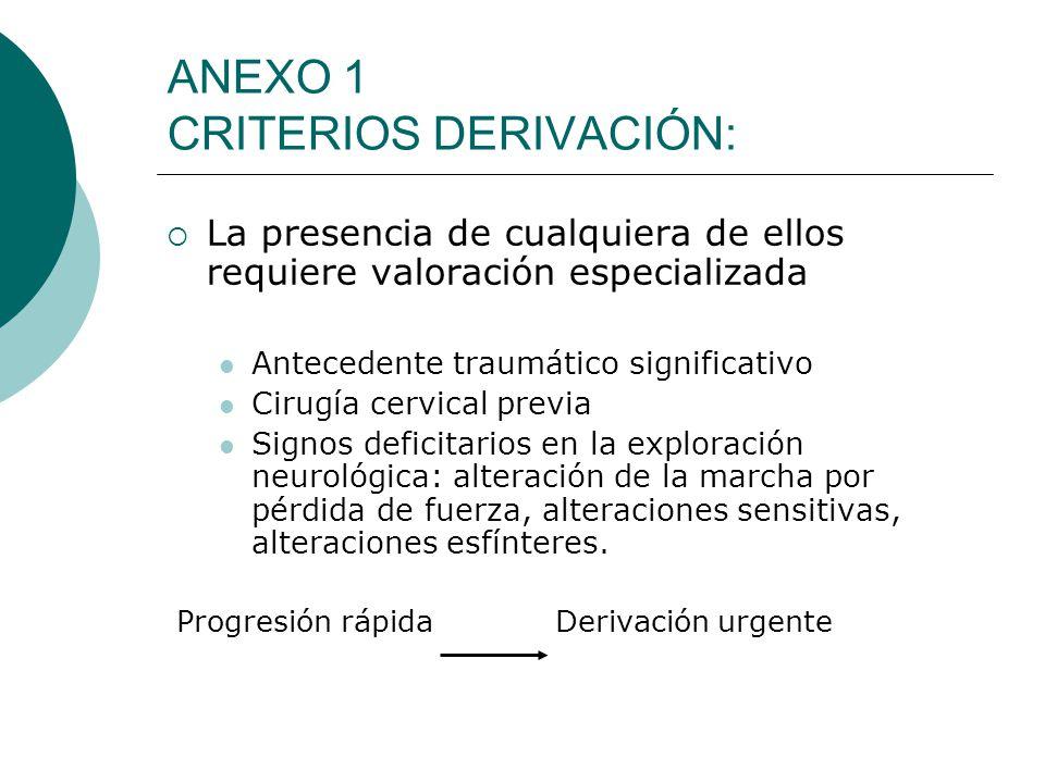 ANEXO 1 CRITERIOS DERIVACIÓN: