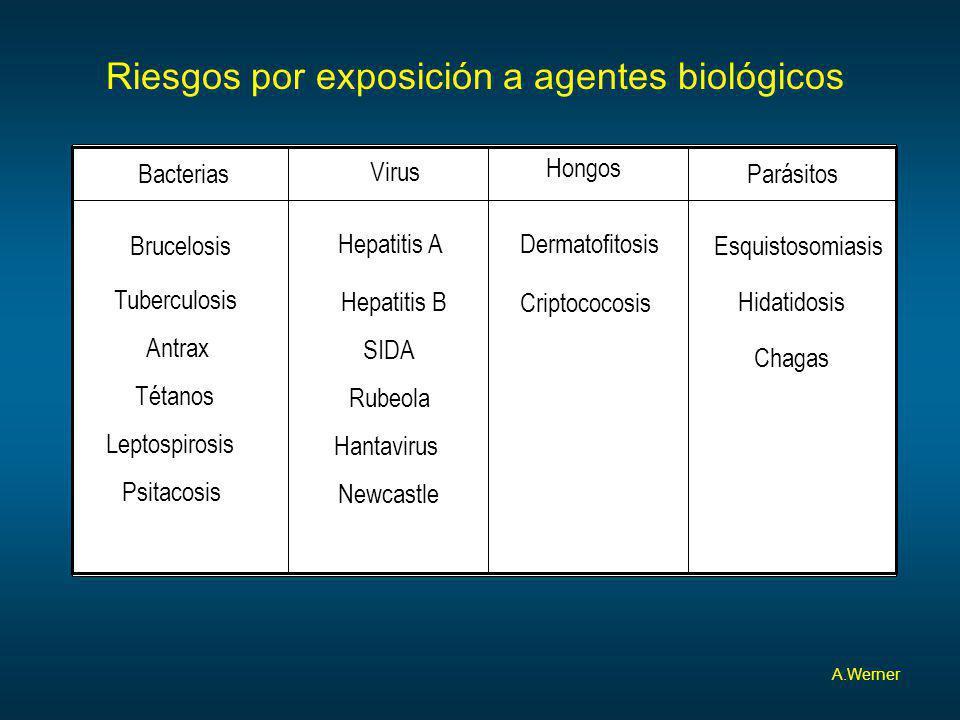 Riesgos por exposición a agentes biológicos