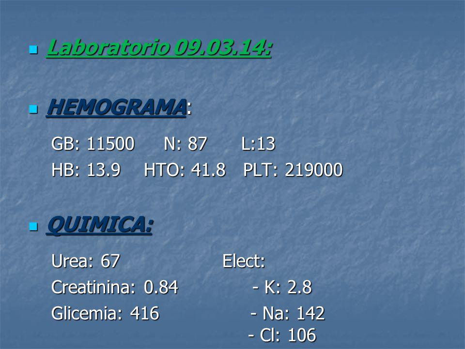 Laboratorio 09.03.14: HEMOGRAMA: QUIMICA: GB: 11500 N: 87 L:13