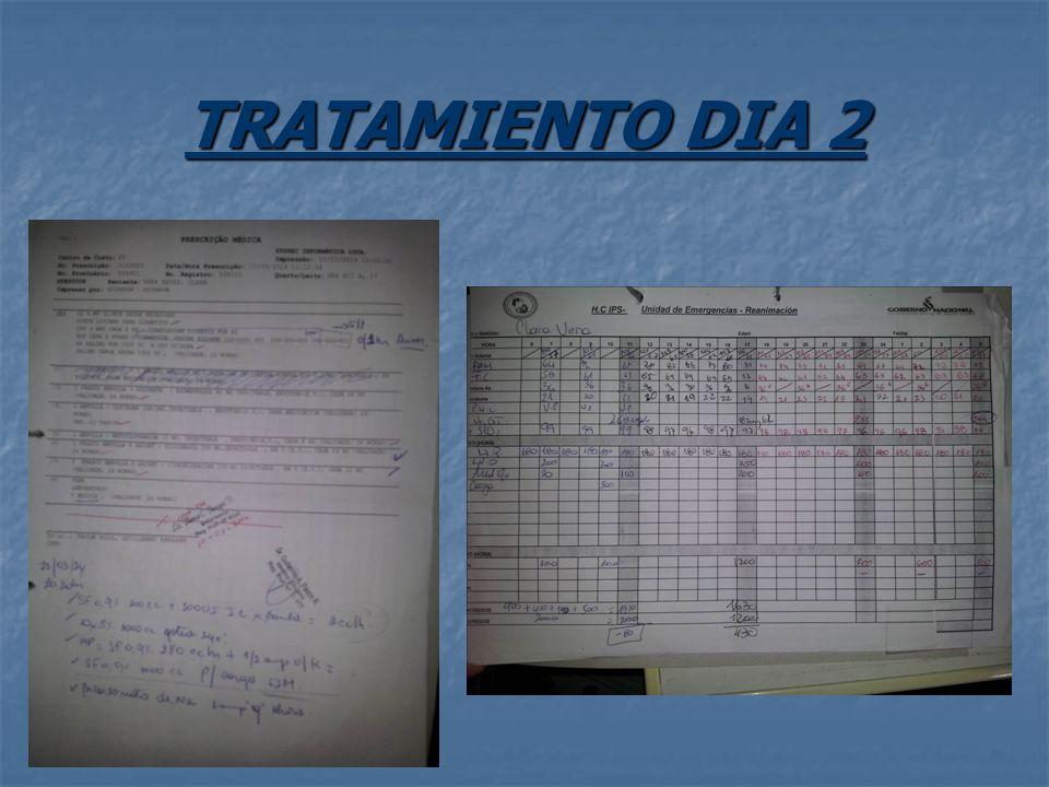 TRATAMIENTO DIA 2