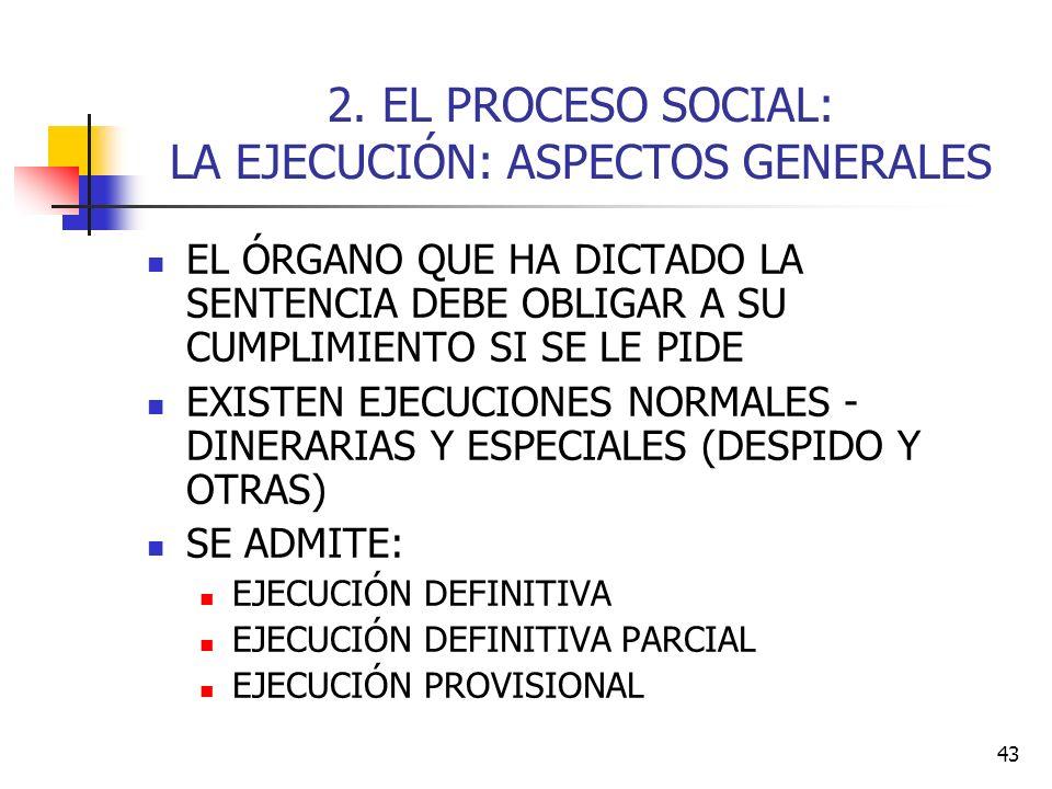2. EL PROCESO SOCIAL: LA EJECUCIÓN: ASPECTOS GENERALES