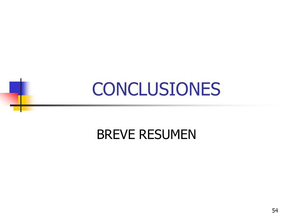 CONCLUSIONES BREVE RESUMEN