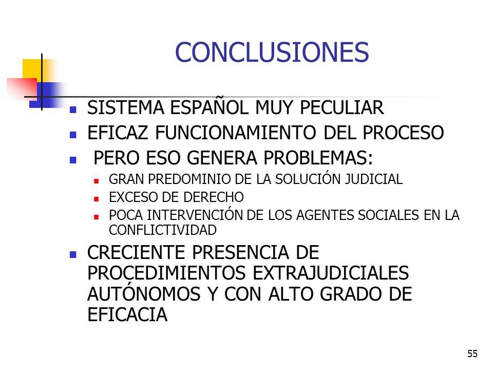 CONCLUSIONES SISTEMA ESPAÑOL MUY PECULIAR