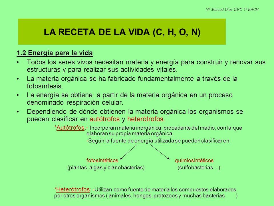 LA RECETA DE LA VIDA (C, H, O, N)