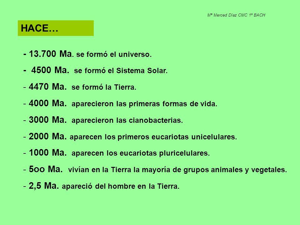 HACE… - 13.700 Ma. se formó el universo.