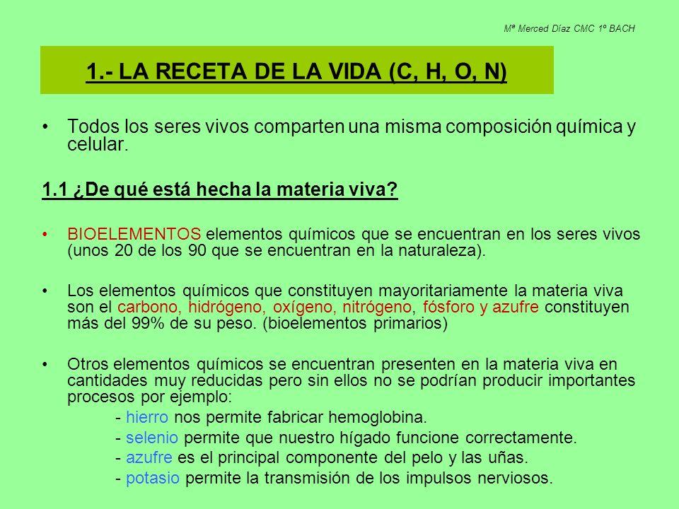 1.- LA RECETA DE LA VIDA (C, H, O, N)