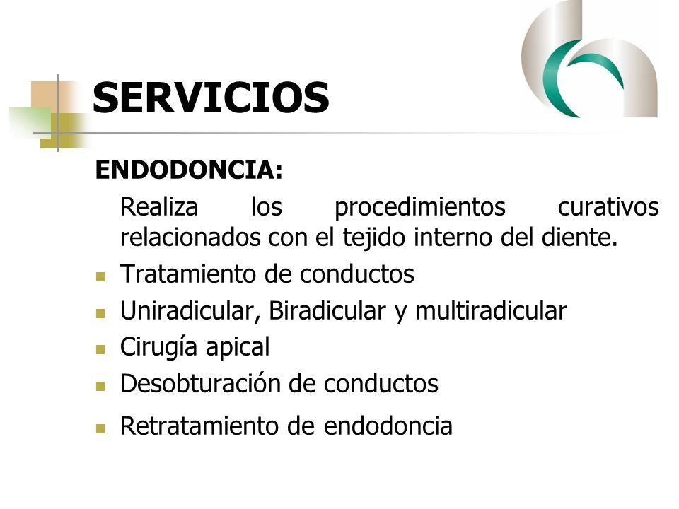 SERVICIOS ENDODONCIA: