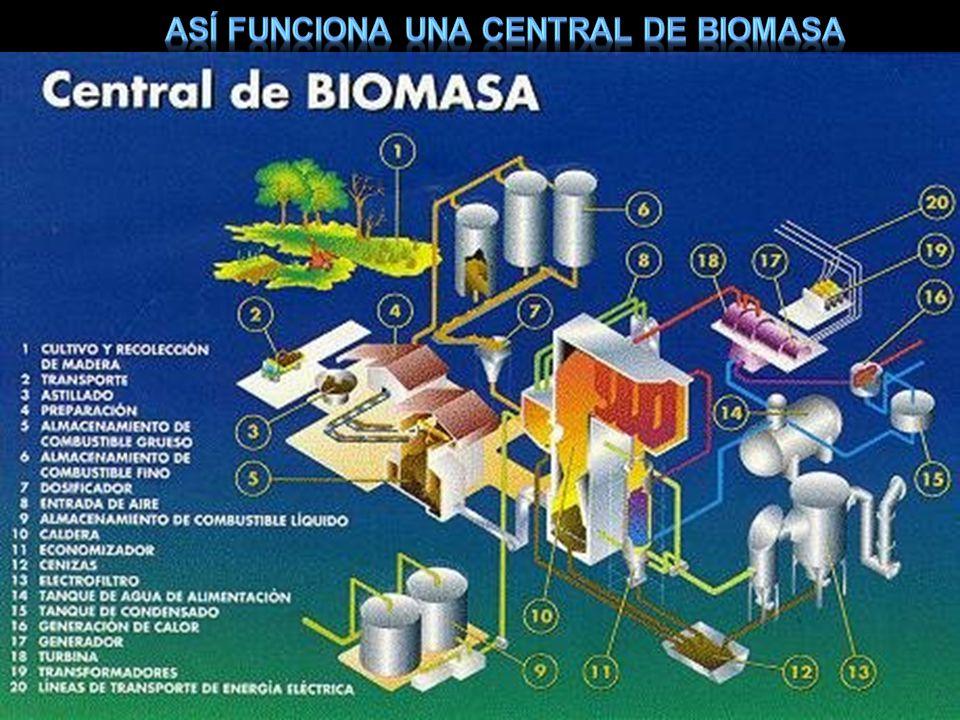 Así funciona una central de biomasa