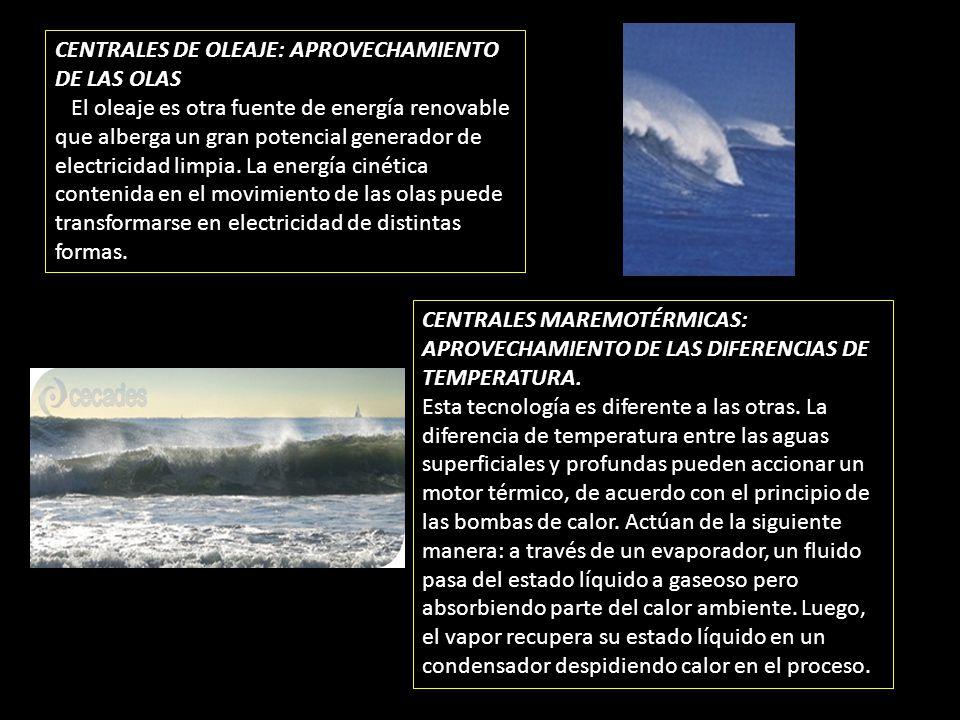 CENTRALES DE OLEAJE: APROVECHAMIENTO DE LAS OLAS