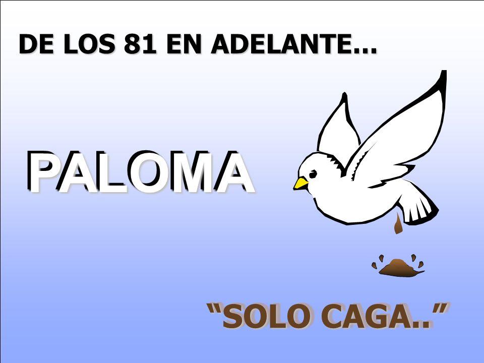 DE LOS 81 EN ADELANTE... PALOMA SOLO CAGA..