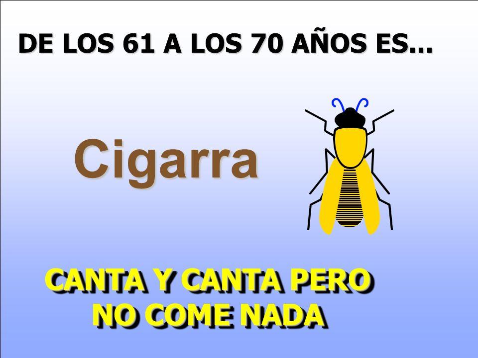 CANTA Y CANTA PERO NO COME NADA