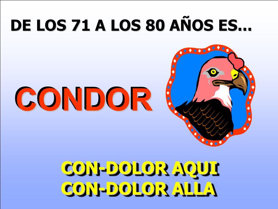 DE LOS 71 A LOS 80 AÑOS ES... CONDOR CON-DOLOR AQUI CON-DOLOR ALLA