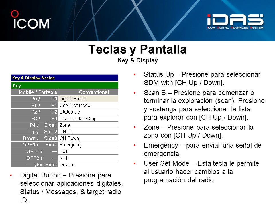 Teclas y Pantalla Key & Display