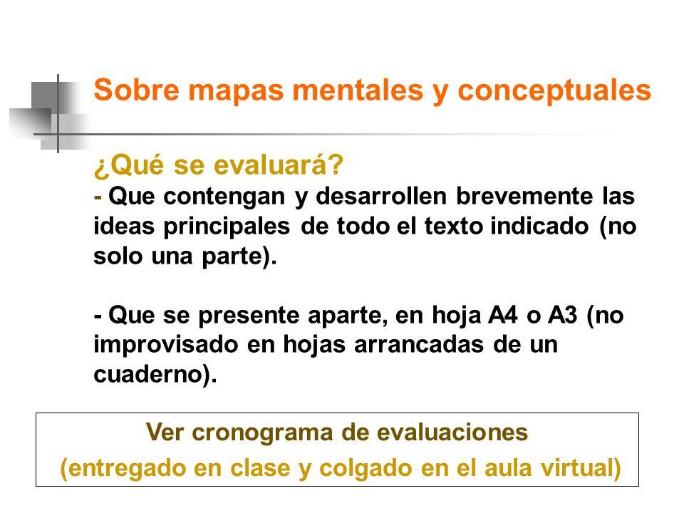 Sobre mapas mentales y conceptuales ¿Qué se evaluará