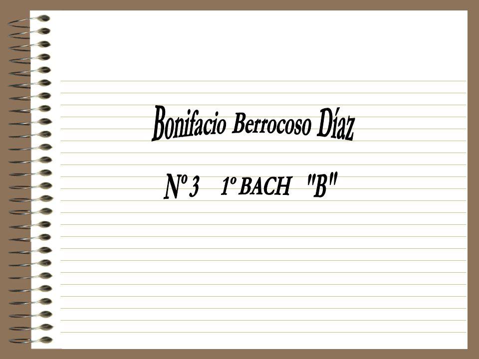 Bonifacio Berrocoso Díaz
