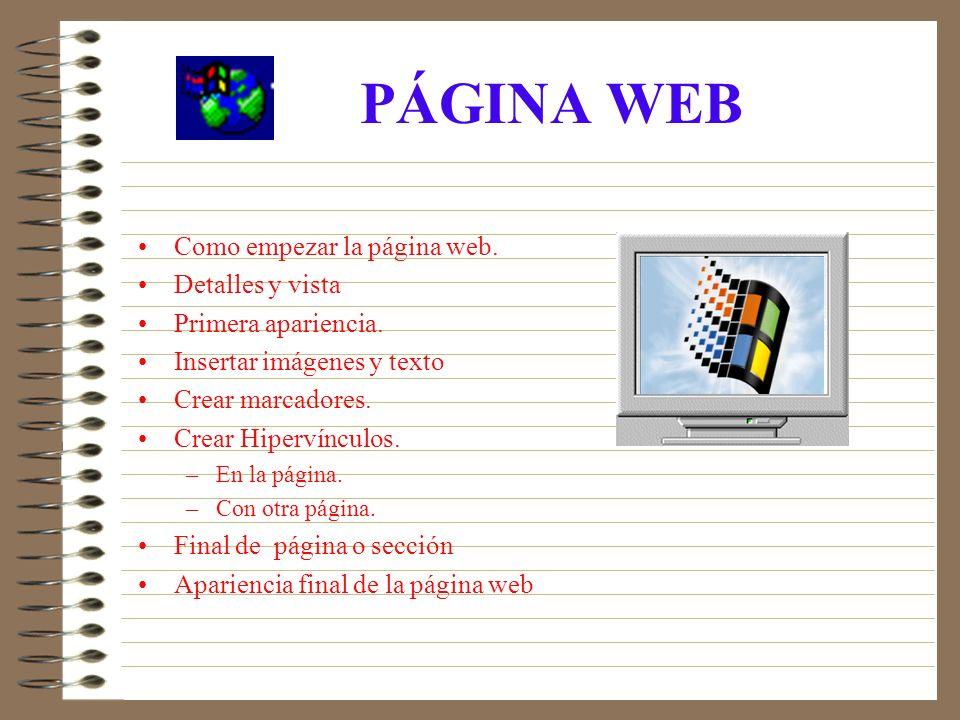 PÁGINA WEB Como empezar la página web. Detalles y vista